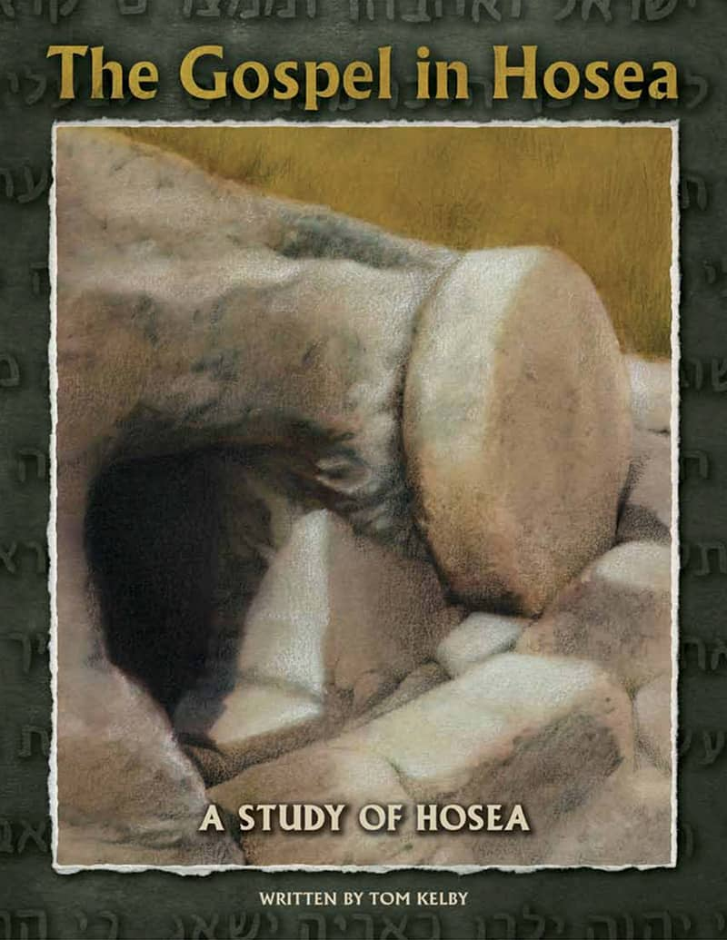 cover of In the The Gospel of Hosea Bible study